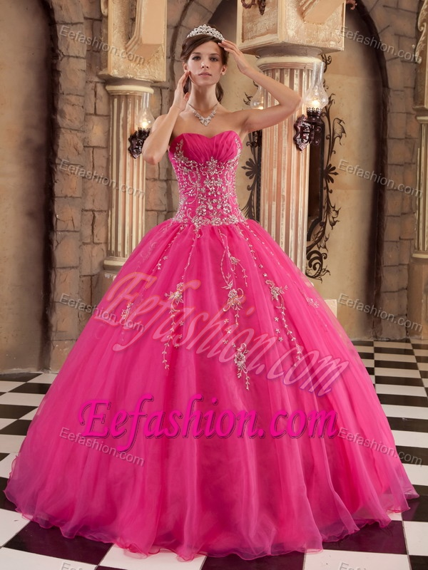 Long Pink Gown