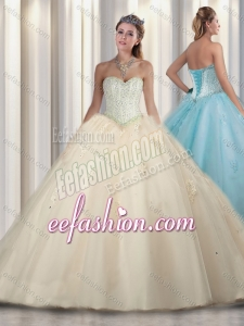 Simple Princess Beading and Sweet 16 Gowns Champagne Dresses