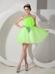 Unique Spring Green Strapless Short Celebrity Dress for Prom with Flower