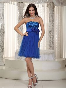 Royal Blue Strapless Organza and Sequins Betty Celebrity Dresses with Bowknot