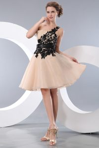 Champagne A-line Single Shoulder Celebrity Dresses in Organza with Appliques