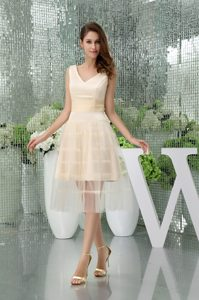 Chic Champagne V-neck Straps Tea-length Satin and Tulle Celebrity Party Dress