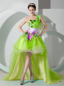 Cheap One Shoulder High Low Princess Junior Prom Dress in Yellow Green