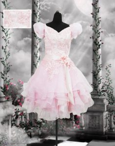 Romantic Baby Pink Short Sleeves Organza Lace Up Prom Dress for Prom and Party