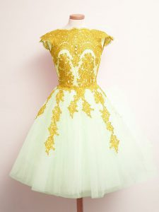 Attractive Multi-color Tulle Lace Up Scalloped Sleeveless Mini Length Wedding Party Dress Appliques