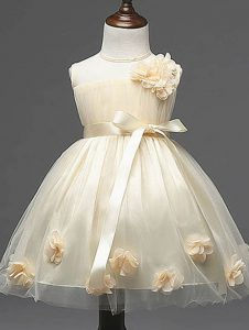 Fashionable Tulle Sleeveless Knee Length Girls Pageant Dresses and Hand Made Flower
