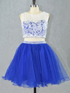 Cheap Lace and Appliques Royal Blue Zipper Sleeveless Mini Length