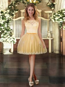 Exquisite Tulle Sleeveless Mini Length Prom Gown and Lace and Appliques