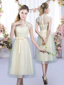 Pretty Tea Length Empire Cap Sleeves Champagne Dama Dress Zipper