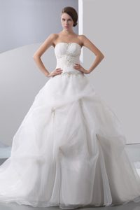 Pretty A-line Strapless Wedding Dresses with Chapel Train in and Organza