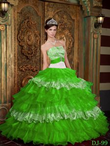 Ornate Spring Green Strapless Ruffled Quinceaneras Dress in Organza and Zebra