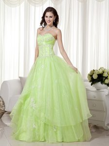 Green A-line Sweetheart Organza Beaded Prom Party Dress with Appliques on Sale