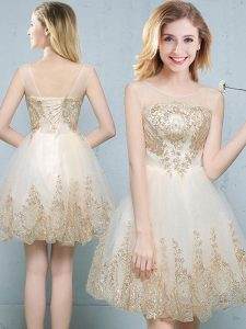 Lovely Scoop Sleeveless Tulle Dama Dress Appliques Lace Up