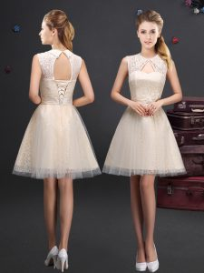 Champagne Tulle Lace Up Damas Dress Sleeveless Mini Length Lace and Appliques and Belt