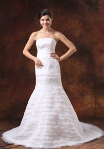 Nice Embroidery Decorated Bodice Mermaid Brush Train Bridal Dress in Organza