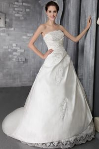 Magnificent Princess and Lace Fall Wedding Dress with Court Train