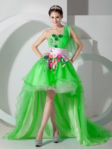 2014 Spring Green One Shoulder High-low Beaded and Appliqued Cocktail Dress