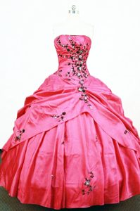 Lovely Hot Pink Dress for Quinceanera with Black Appliques and Beading