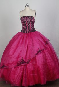 Fashionable Strapless Hot Pink Quincenera Dresses with Appliques Decorated