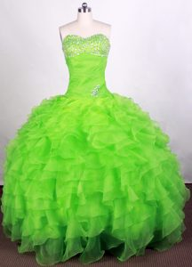Discount Spring Green Quinceanera Gown Dresses with Beading in Organza