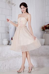 Strapless Tea-length Baby Pink Organza Dama Cocktail Dress with Appliques