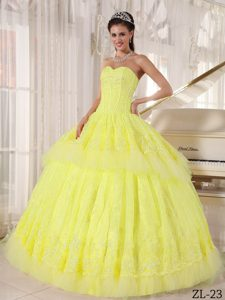 Beautiful Sweetheart Organza Quinceanera Dress with Appliques on Promotion