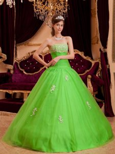 Pretty Green Strapless Tulle Quinceanera Dress with Appliques for Custom Made