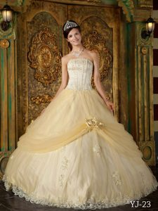 Beautiful Champagne Strapless Tulle Quinceanera Gown Dresses with Appliques