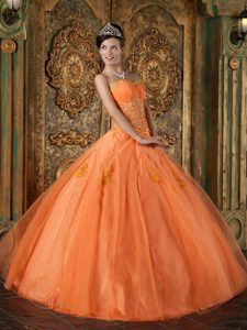 Romantic Sweetheart Long Organza Dress for Quinceanera in Orange