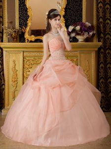 Exquisite Ruched and Beaded Lace-up Organza Quinceaneras Dress in Pink