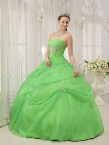 2013 Romantic Sweetheart Long Organza Spring Green Dress for Quince