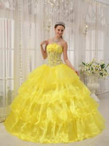 Wonderful Yellow and Organza Long Quinceanera Gowns with Beading
