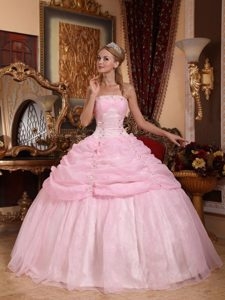 2013 Charming Strapless Lace-up Organza Dress for Quinceanera in Baby Pink