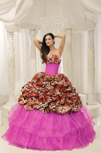 Fashionable Leopard Multi-colored Quinceanera Dress with Beading Pick-ups