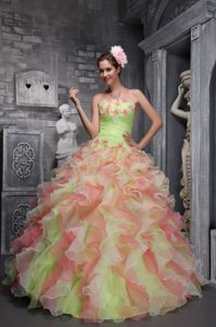 New Style Floral Embellishments Multi-colored Quinceanera Dress with Ruffles