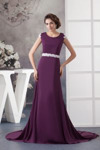 Popular Brush Train Dark Purple Mother of the Bride Dress with Applique