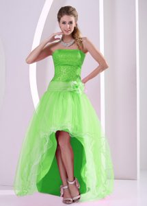 High-low Spring Green Semi-formal Prom Dresses with Sequins in Organza