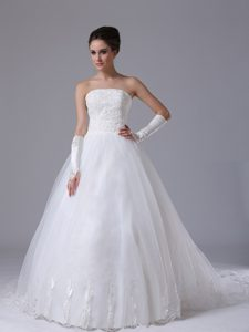 Beautiful Organza Lace-up Fall Wedding Dress with Chapel Train under 250