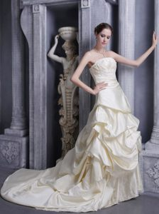 A-line Strapless Court Train Elegant Wedding Attire in Champagne
