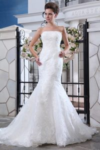 Mermaid Strapless Court Train Lace Affordable Wedding Dresses with Belt