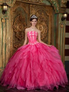 New Hot Pink Strapless Organza Quinceanera Dress with Appliques and Ruffles