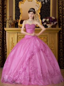 Hot Pink Sweetheart Organza Quinceanera Dress with Appliques on Promotion