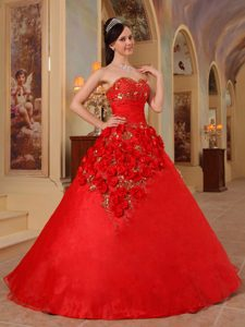Red Sweetheart Organza Handle Flowers Quinceanera Dresses with Corset