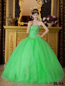 Spring Green Strapless Organza Beading 2013 Dresses for A Quinceanera