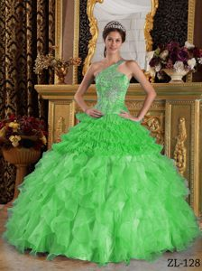 Spring Green One Shoulder Satin and Organza Beading Quinceanera Dress