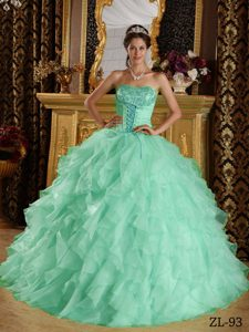 Apple Green Satin and Organza Embroidery with Beading Quinceanera Dress