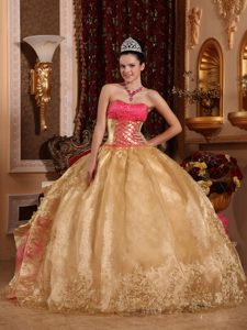 Gold and Hot Pink for Strapless Organza Embroidery Quinceanera Dresses