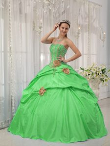 Boning Details Beading and Flowers Quinceanera Gown Dresses in Green