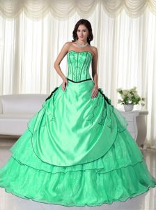 Apple Green and Black Ball Gown Organza Beading Quinceanera Dresses