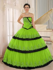 Spring Green and Black Flowers Custom Made for 2013 Quinceanera Dresses